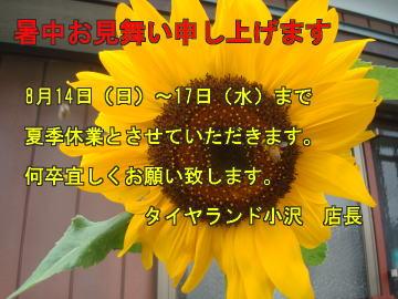 11_08_06_05.jpg