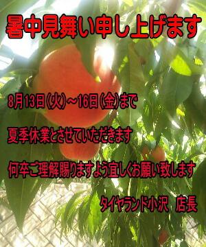 13_08_01_01.jpg
