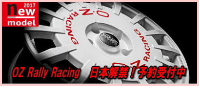 sale_rallyracing_1.jpg