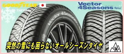 sale_vector4_01.jpg